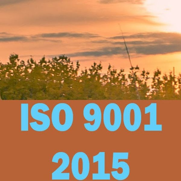 ISO 9001 2015 infographic